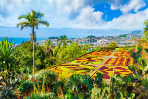 Botanical-Gardens, Funchal, Madeira Tour Azores Travel